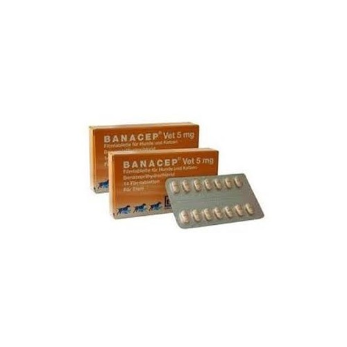 Banacep Vet 5 mg.