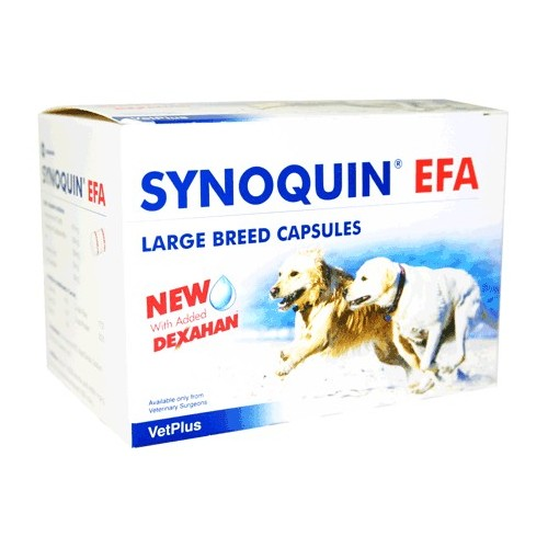 Synoquin EFA Large Breed