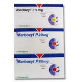 Marbocyl comprimidos