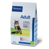 Adult Neutered Cat
