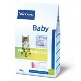 Baby Pre Neutered Cat