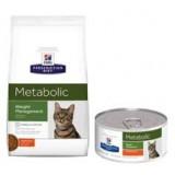 Feline Metabolic