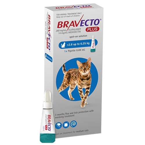 Bravecto Plus gatos medianos