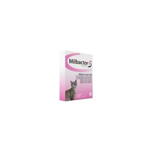 Milbactor gato
